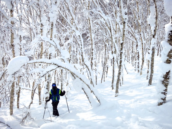 Me tree skiing through deep powder in Niseko, Japan!