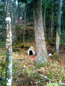 Aokigahara Dog Kennel