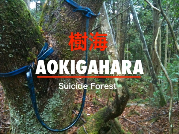 aokigahara-suicide-forest.jpg?w=584&h=438