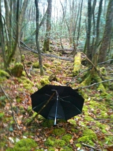 Aokigahara Umbrella