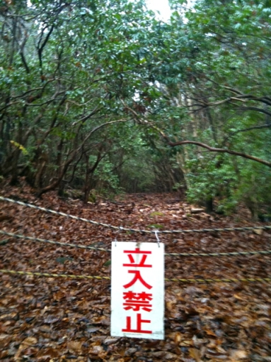 Aokigahara No Entry